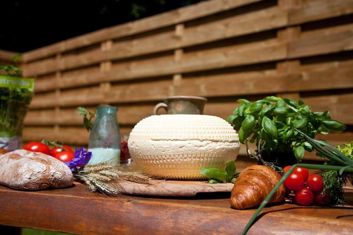 Ser koryciński – przepis na idealny ser domowej roboty